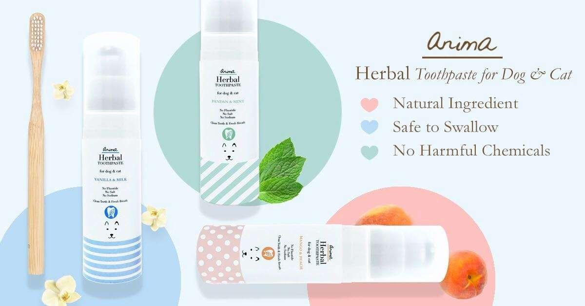Anima Herbal Dog & Cat Toothpaste