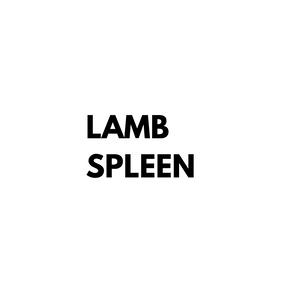 Lamb Spleen