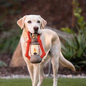 Camp Corbin Squeaky Plush Dog Toy